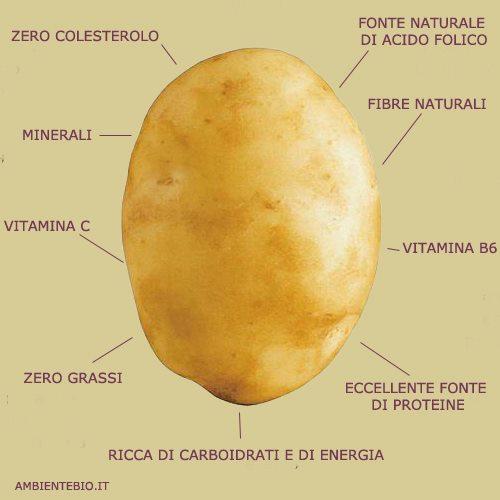 proprietà patata