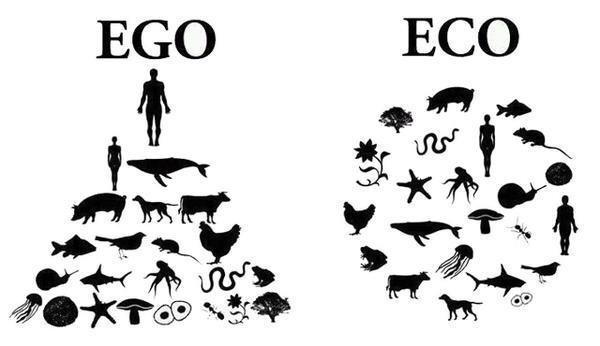 ecocentrismo